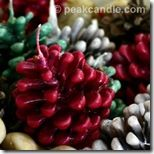 Pinecone Fire Starters (awesome idea and so easy!)  Can't wait to try these!  Instead of dye you can use pieces of wax crayons for color.  Wonderful idea for using up wax from my melt-warmer!!