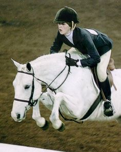 Large pony hunter ~   Welsh / Connemara cross