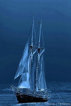 Moonlight Illusion by Marcel J. Fernandez