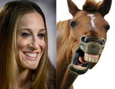 The Origin of Sarah Jessica Parker comparison to a horse. If you've been around the internet for 10 minutes or more, you've probably seen a comparison of Sa