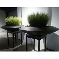 Landscaping Software - Offering Early View of Completed Project Fiberglass Malva Dish Planter Large Plants, Green Plants, Potted Plants, Indoor Plants, Plant Pots, Interior Garden, Interior Plants, Ikebana, Fiberglass Planters