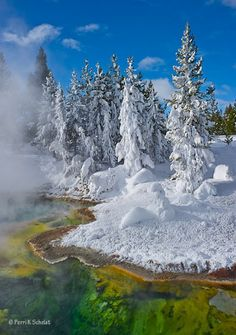 Yellowstone National Park, WY, USA