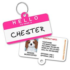 Hello Name Badge Custom Dog Tags for Pets - Available in 7 Colors - Personalized Pet ID Tags - Dog Tags For Dogs - Dog ID Tag - Personalized Dog ID Tags - Cat ID Tags - With Pet Photo * For more information, visit image link.