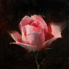 Rose Study 2017 02, painting by artist Qiang Huang