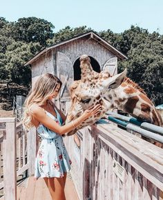 Photography travel ideas pictures Ideas for 2019 Travel Pictures, Travel Photos, Cute Pictures, Travel Ideas, Cute Creatures, Beautiful Creatures, Phuket, Poses Photo, Travel Aesthetic
