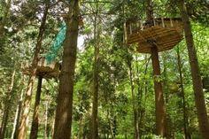 Un rêve d'enfant....construire une cabane dans les arbres....et y dormir - Cabane Perchée En Haut Des Arbres