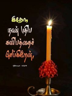 Bible Words In Tamil, Bible Words Images, Biblical Verses, Bible Verses, Good Morning Christmas, Insta Dp, Dove Pictures, Bible Study Notebook, Cute Girl Drawing