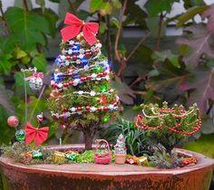 Oh Christmas Tree! For Miniature Garden, Fairy Garden, Centerpieces, Holiday, Gi. Oh Christmas Tre Christmas Garden, Miniature Christmas Trees, Christmas Tree Farm, Christmas Minis, Christmas Crafts, Christmas Bulbs, Diy Centerpieces, Outdoor Christmas Decorations, Miniature Fairy Gardens