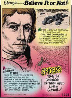Ripley Believe It Or Not, Hurricane Matthew, True Crime, Macabre, Comic Strips, Creepy, Sick, Fun Facts, Steampunk
