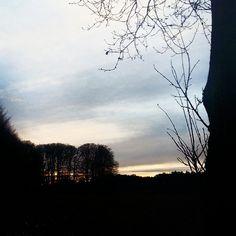 Winter - zonsondergang bij Ellecom