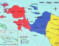 PAPUA | Pemekaran bermotif politik korbankan rakyat