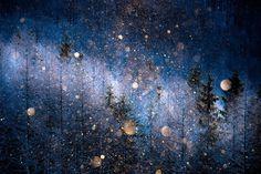Алмазная пыль в Японии — атмосферное явление, твёрдые осадки в виде мельчайших ледяных кристаллов, парящих в воздухе, образующиеся в морозную погоду. (Фото Masayasu Sakuma | Sony World Photography Awards 2017)