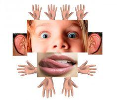 Collage over zintuigen