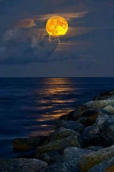 Puesta de Sol..... Harvest Moon over the ocean. but id love to see it from a sailboat... out in the ocean. ;)