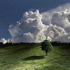 Face cloud behind the cauliflower clouds :)