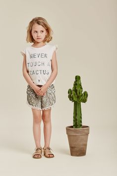 Never touch a cactus