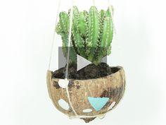 ¿Cansado de tener siempre los mismos jarrones? ¡Atrévete a crear un jarrón colgante de coco para tus plantas!