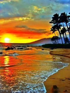 What I wouldn't give to be walking a beach like this in a warm beautiful place.....lost in my prayers & thoughts looking for answers to questions I simply don't understand.