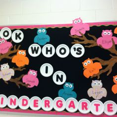 """look who's in Kindergarten"" owl themed back to school bulletin board. Like the use of paper plates! Owl Bulletin Boards, Kindergarten Bulletin Boards, Back To School Bulletin Boards, In Kindergarten, Bullentin Boards, Decorative Bulletin Boards, Owl Theme Classroom, School Classroom, Classroom Ideas"