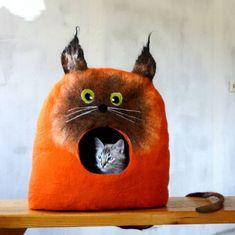 Chat caché dans une tête de chat !