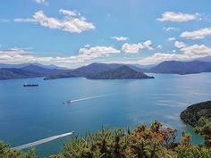 #newzealand #travel #theendoftheworld #podroze #couplegoals #dreams #view #sea #queencharlottetrack #sun #beautiful #cotamwpodrozy #blog #vlog