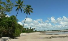 valgodi à Ilha de Boipeba - TripAdvisor