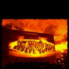 At a wonderful New World Symphony Wallcast.