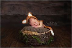 Newborn fox bonnet and tail set.  Available on Etsy https://www.etsy.com/listing/202672543/newborn-fox-hat-and-tail-set-newborn-fox?ref=shop_home_active_3  Image by Bonnie Raley photography