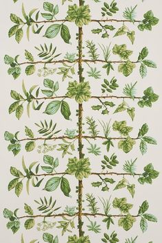 Discover hundreds of wallpaper ideas on HOUSE - design, food and travel by House & Garden including Espalier by Pierre Frey