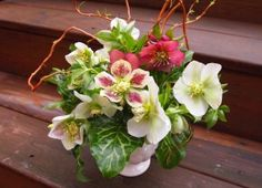 Arum and Hellebores Are In Season. Pluck some from a neighbor's yard (ask first!) and take inspiration from this gorgeous arrangement // sarah von pollaro