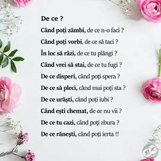 De ce? Bible Verses Quotes, Life Quotes, Cool Words, Wise Words, My Notebook, Beautiful Words, Motivational Quotes, Lyrics, Positivity