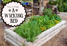 Excellent for drought conditions, wicking beds are great for small space gardeners, too.