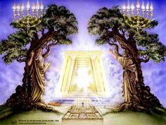 Tree of Hai and Tree of knowledge .  Wash our robes to have the right to the Tree of hai . Rev 22:14