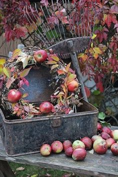 Gardening Autumn - Beautiful fall vignette with a apple wreath, old rake, and a vintage metal box. So pretty with the red leaves and apples. - With the arrival of rains and falling temperatures autumn is a perfect opportunity to make new plantations Fall Home Decor, Autumn Home, Autumn Garden, Apple Wreath, Fall Vignettes, Apple Decorations, Thanksgiving Decorations, Vibeke Design, Apple Harvest