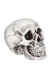 Foam Skull Decoration - Party City