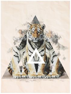Majestic Animals Part.2 by Gherasim Florin, via Behance lion
