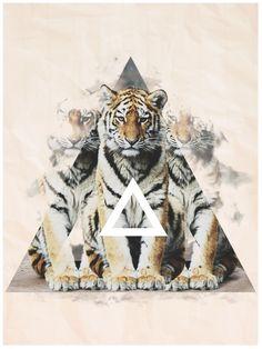 Majestic Animals Part.2 by Gherasim Florin, via Behance  lion