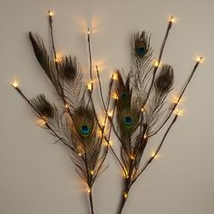 Our rustic branches are adorned with peacock feathers and 30 warm white LED lights that fill the room with color and shine. Vibrant decorations for the harvest season and beyond, they look great placed in a pot or vase.