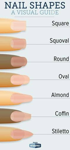 Nail shapes @GottaLoveDesss #websitetips #investmenttips #cosmetologytips #blackbeautytips #beautytipshaircare #celebritybeautytips #smokingtricks #fidgetspinnertricks #traveltips #cleaningtips #breastfeedingtips #movingtips #photographytips http://tipsrazzi.com/ppost/512284526350875155/