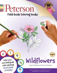 Peterson Field Guide Coloring Books: Wildflowers (Peterson Field Guide Color-In Books): Frances Tenenbaum, Roger Tory Peterson, Virginia Savage: 9780544026971: Amazon.com: Books