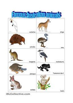 Australian animals worksheet - Free ESL printable worksheets made by teachers Matching Games For Toddlers, Animal Matching Game, Australian Party, Australian Bush, Australia Crafts, Australia Day, Australia Photos, Animal Worksheets, Animal Activities