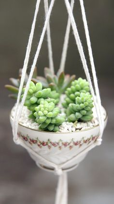 DIY Tea Cup Planter : Have a spare tea cup lying around? With a little string and just 10 knots, you can turn it into a stunning planter. Have a spare tea cup lying around? With a little string and just 10 knots, you can turn it into a stunning planter. Diy Crafts Hacks, Diy Home Crafts, Plant Crafts, Tea Cup Planter, Diy Para A Casa, Macrame Design, Macrame Projects, Garden Projects, Hanging Planters