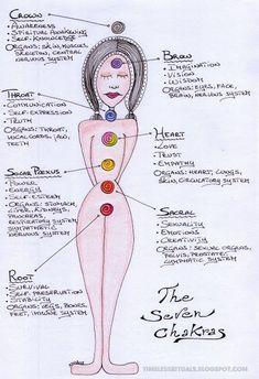 Los chakras son centros de energía circular. En el cuerpo físico encontramos 7 chakras principales, 21 chakras menores y más de 300 micro...