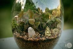 Budha Mundi | os mini mundos