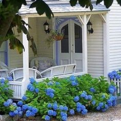 Hydrangea Country Front Porch