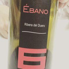 Ébano 6 (Ribera del Duero) #vino #tinto #videocata #uvinum