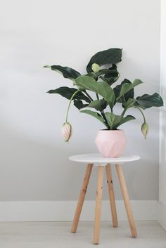 How Japanese Interior Layout Could Boost Your Dwelling 6 Easy Design Tricks We Learned From Our Friends In Scandinavia Via Purewow Indoor Garden, Indoor Plants, Potted Plants, Deco Studio, Sweet Home, Ideas Para Organizar, Farmhouse Side Table, Easy Home Decor, Plant Design