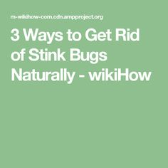 How to Get Rid of Body Odor Naturally. Body odor can make you feel embarrassed or self-conscious, but don't worry because everyone gets it and you aren't alone. If you struggle with maintaining your body odor, you can manage it naturally. Stink Bugs, Body Odor, Self Conscious, How To Get Rid, Helpful Hints, No Worries, Feelings, Tips, Nature