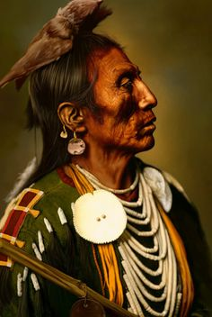 what happened to all of the native american indians?
