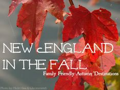Not To Miss: New England Fall Family Destinations